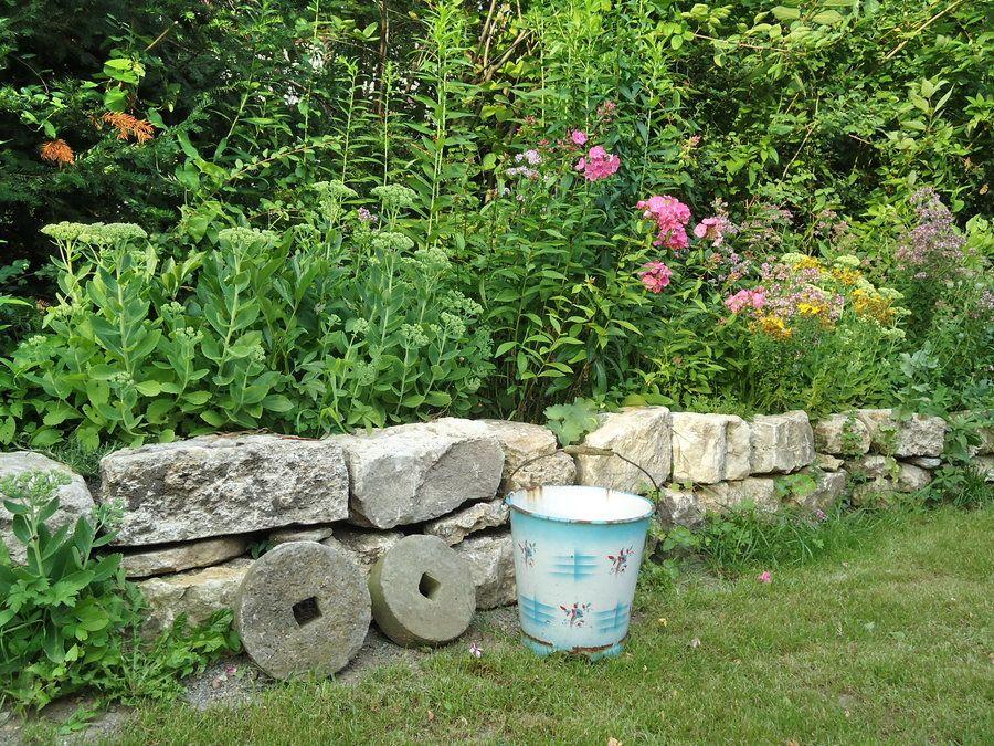 Im Garten Mit Mitglied Kereon Mein Vorbild War Immer Ein Verwilderter Bauerngarten In 2020