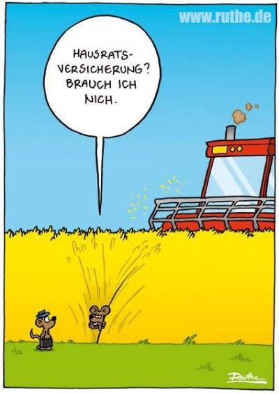 Pin Von Carla Kramer Auf Nicht Lustig Ruthe Pinterest Humor