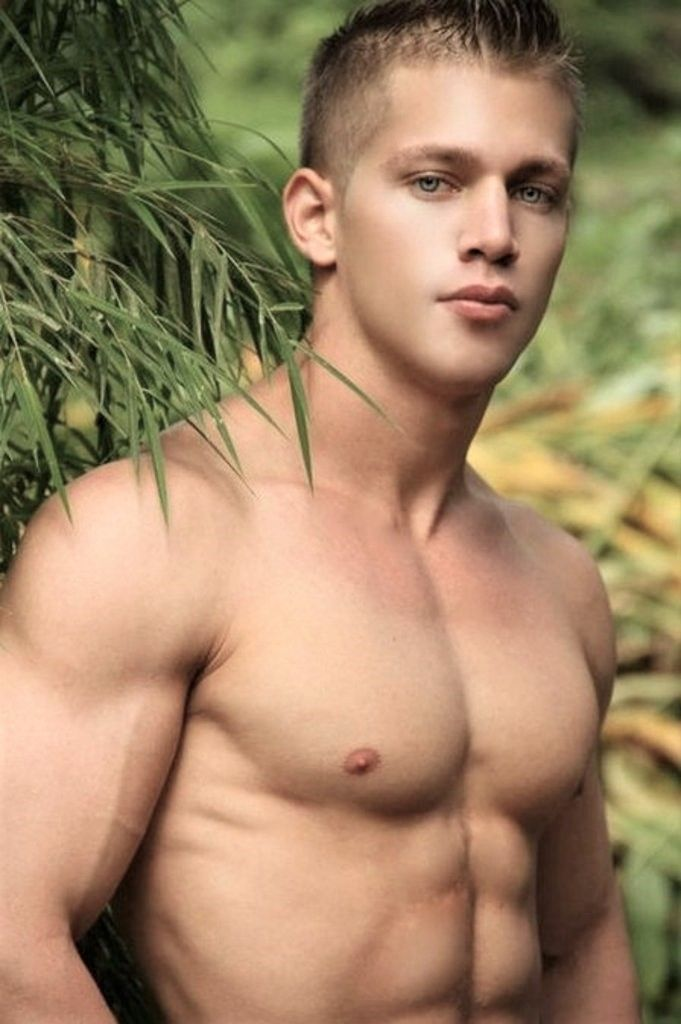 gay muscle studs young
