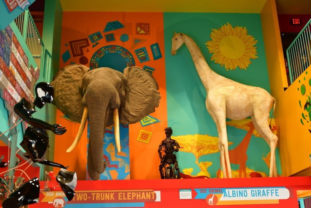 What to Expect When You Visit Ripley's Believe It or Not ...