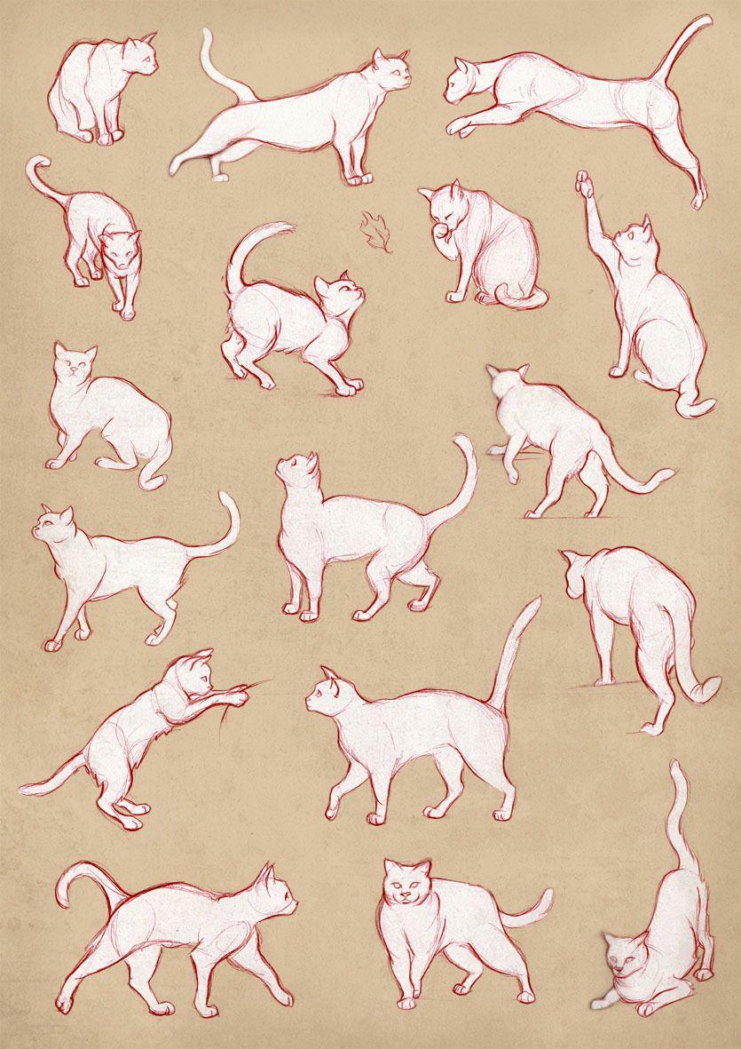 Matilde Søltoft — More from my portfolio. Animal movement. | Dibujo ...