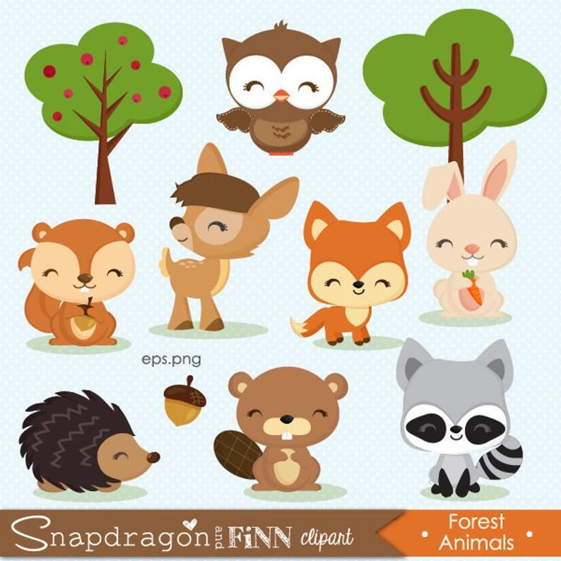 Buy5get5 Woodland Clipart Forest Animal Clipart Baby Animal Clipart Animals Deer Bunny Owl Squirrel Forest Animal Clipart Woodland Clipart Fall Clip Art
