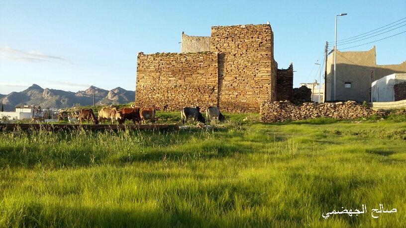 احد البيوت الأثرية في تنومة Monument Valley Natural Landmarks Monument