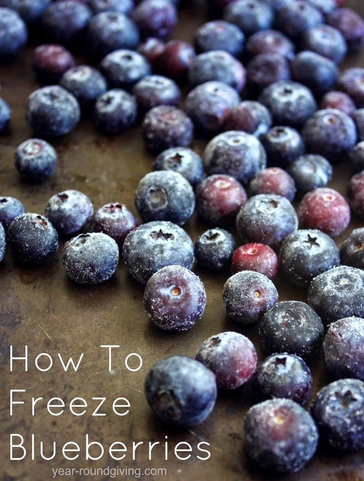 How to freeze blueberries frozen blueberries blueberry