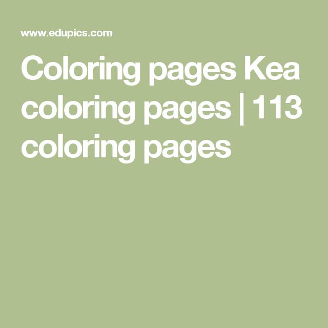 Coloring pages Kea coloring pages | 113 coloring pages | ESL Stuff ...