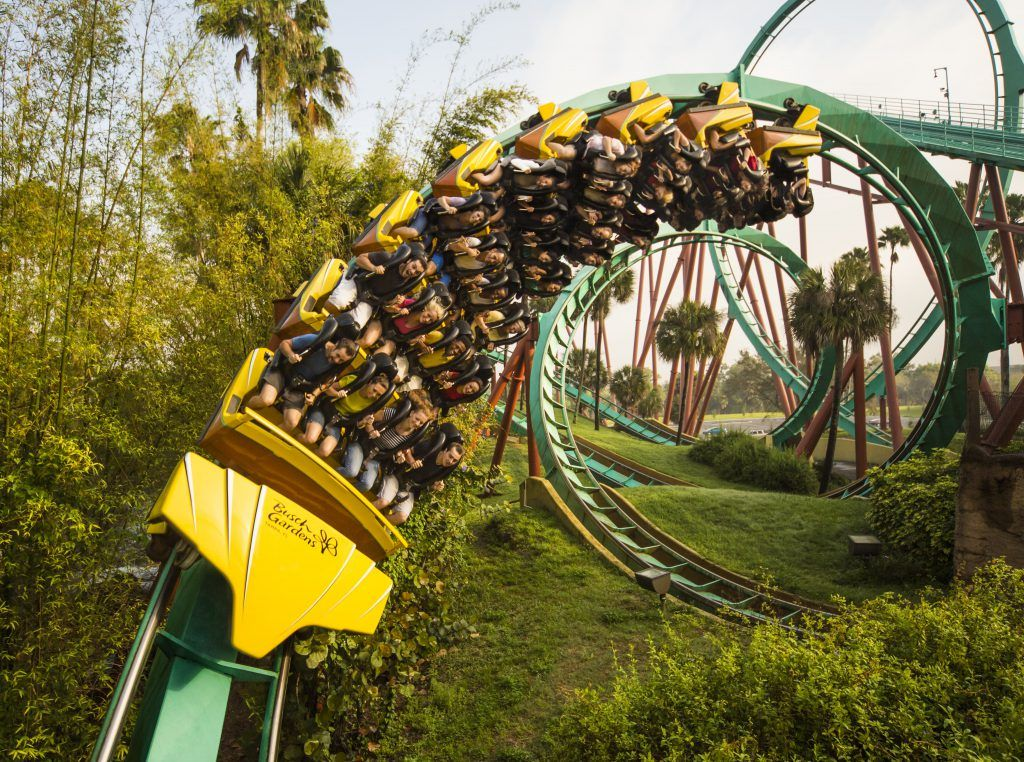 3877cf5f024a99dcb131fefe3e1c636a - Is Busch Gardens Open On Veterans Day