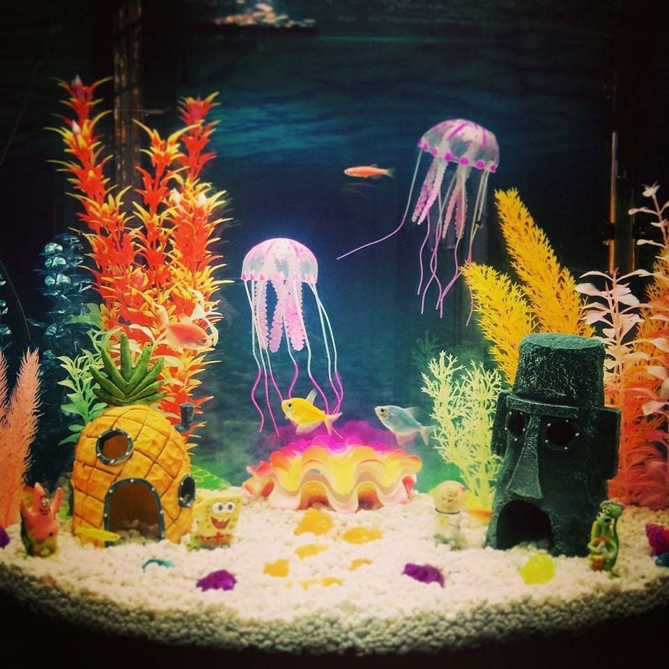 spongebob themed aquarium complete with jelly fish geeks. Black Bedroom Furniture Sets. Home Design Ideas