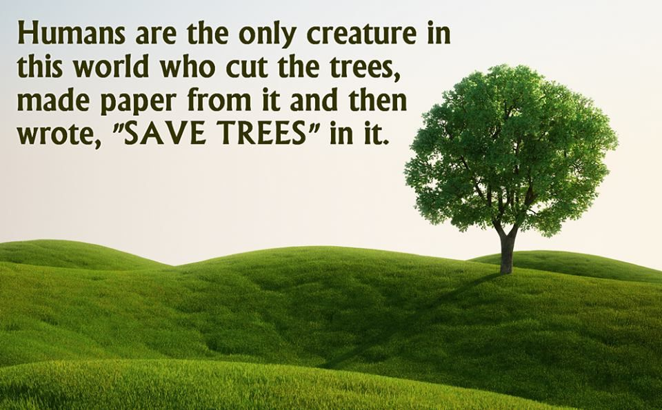 Humans Are Ther Only Creature In This World Who Cut Trees
