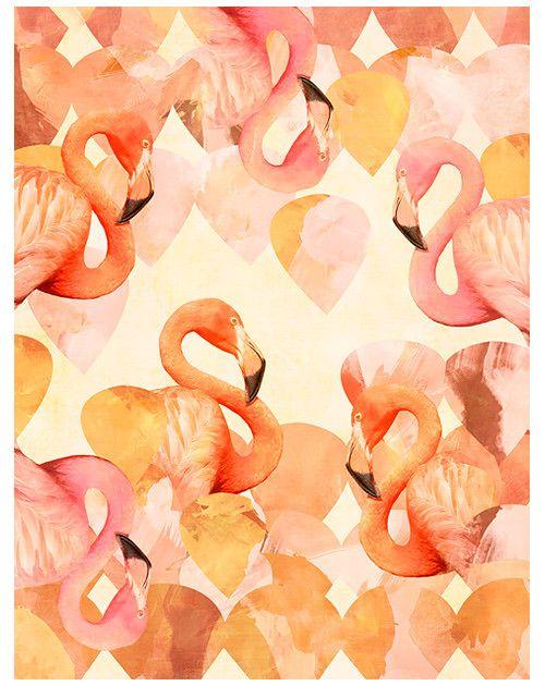 pink / coral / cream / white