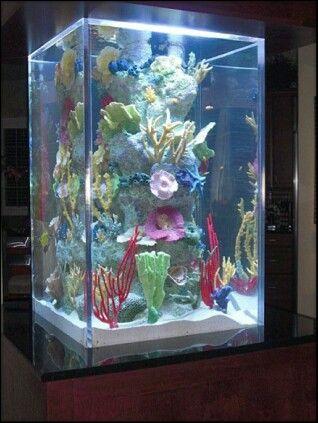tall tank decor aquarium aquarium fish saltwater tank