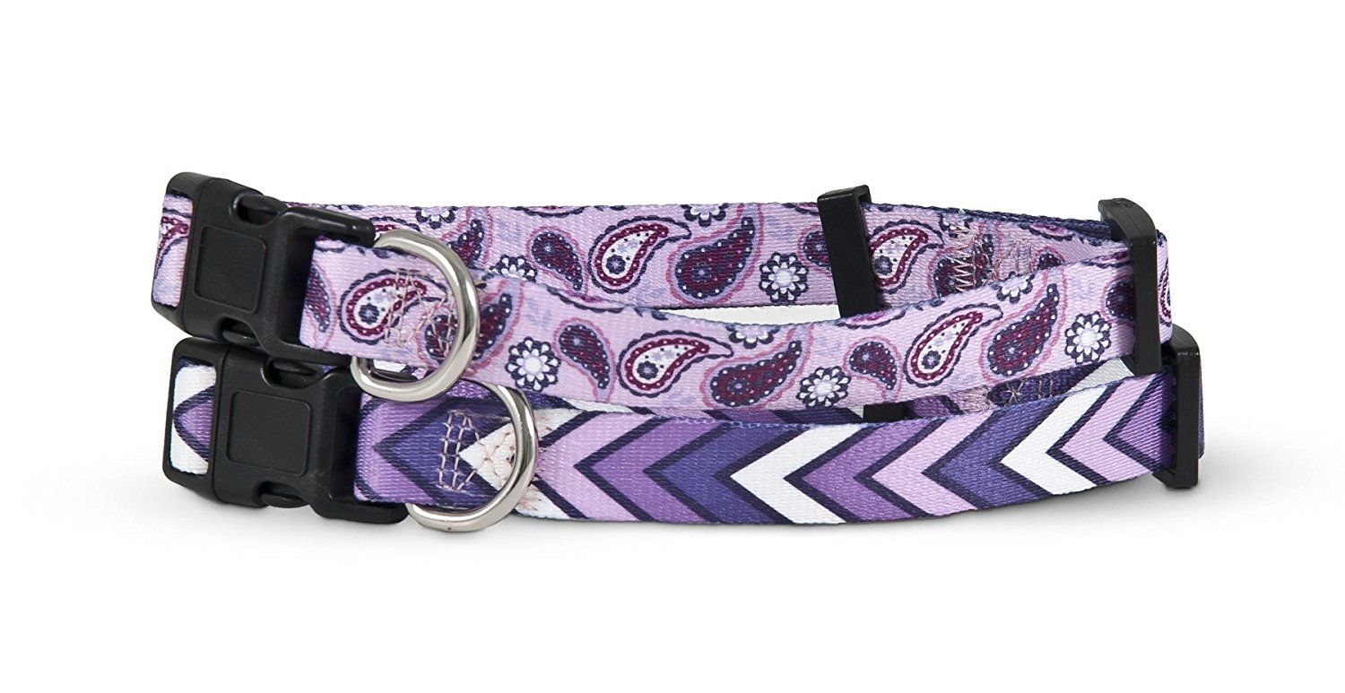 Petmate 11428 2-Side Pet Collar 3/4 by 14 to 20-Inch, Paisley ...