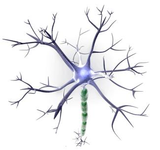 Farmacêutica Curiosa: Estimulação elétrica do cérebro age contra Alzheimer