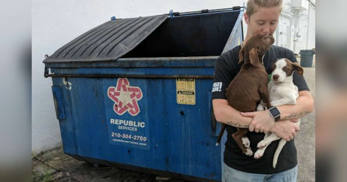 Puppy rescue bay area ca