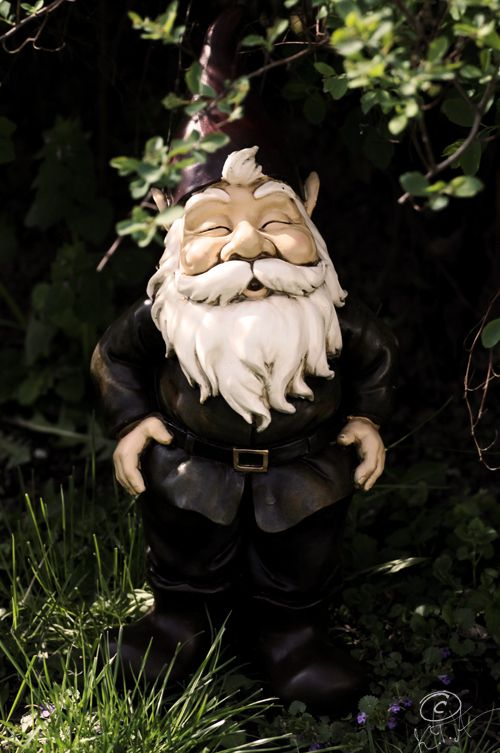 Gnome known as Lucrezia | Nain de jardin | Pinterest | Jardines ...