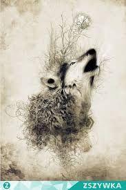 Znalezione Obrazy Dla Zapytania Wyjący Wilk Rysunek Wilki