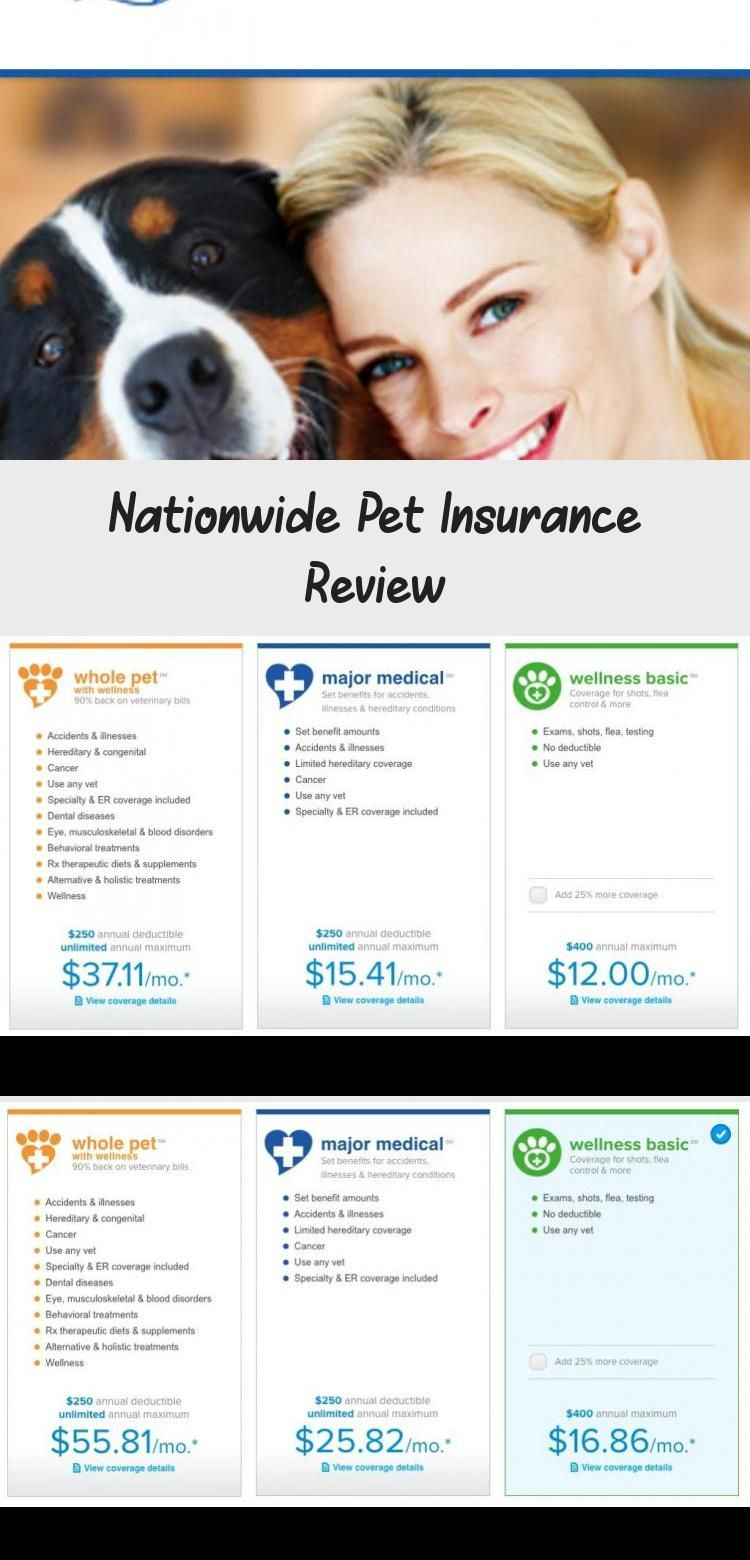 Nationwide Pet Insurance Review in 2020 Pet insurance