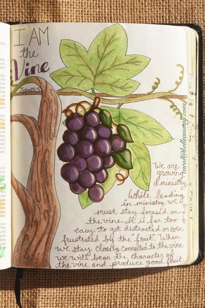 John 15:5 October 9, 2015 tip-in page carol@belleauway.com, grape sticker, colored pencil, bible art journaling, journaling bible, illustrated faith