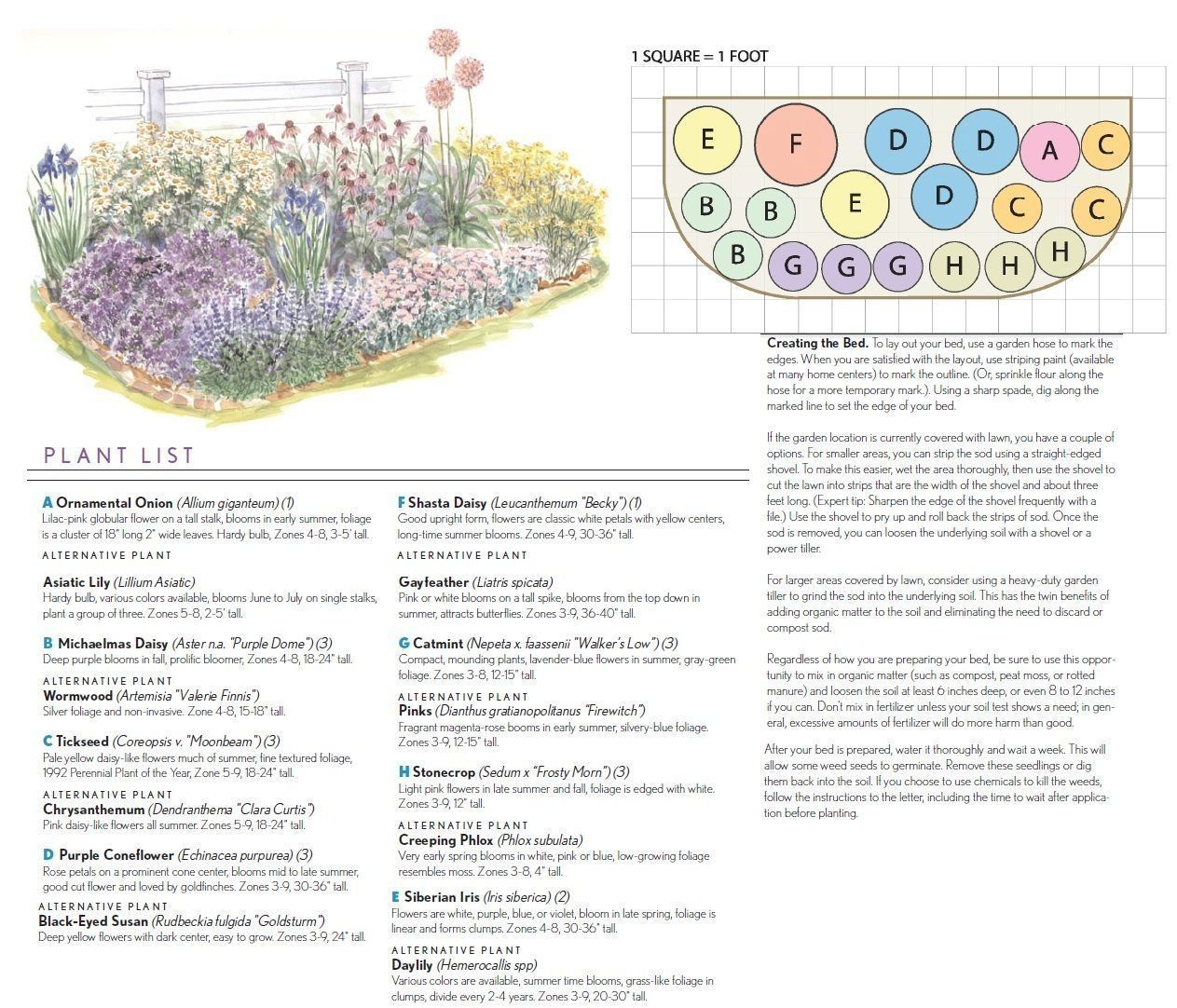 BHG.com beginning full sun garden plan with pictures and ...
