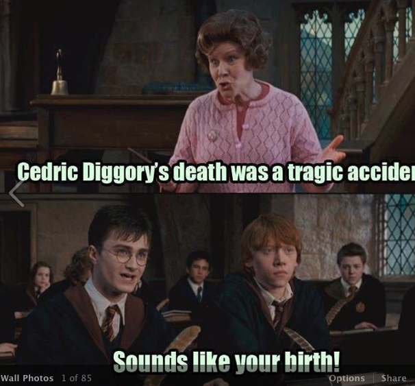 Cedric Diggory S Afterlife Was A Tragic Accident Harry Potter Puns Harry Potter Jokes Harry Potter Funny