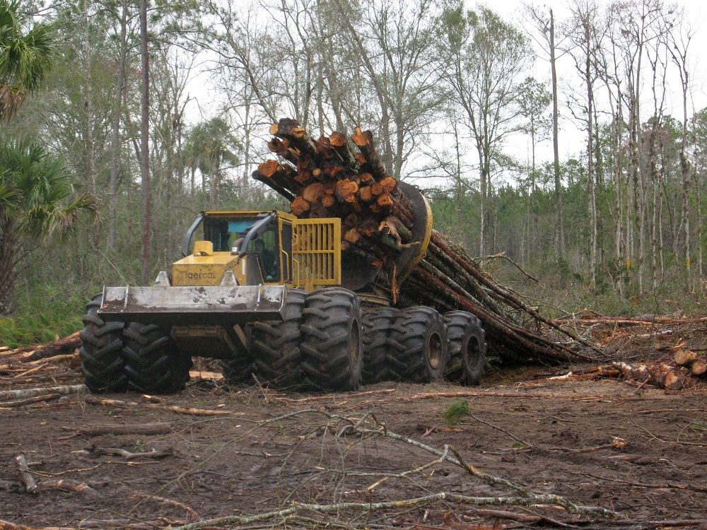 materiel forestier tigercat