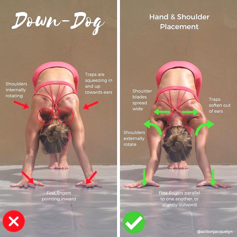 Downward Facing Dog Shoulder Rotation