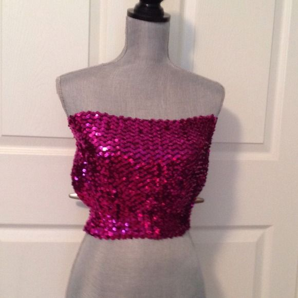 Hot Pink/Fuschia Sequin Tube Top Gorgeous Hot Pink/Fuschia color Sequins.  Stretch material.  Great condition. Tops