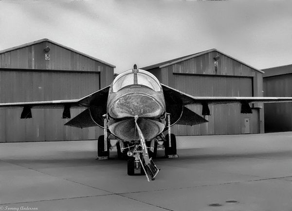 General Dynamics F-111 Ardvark Photograph - Ardvark On Alert by Tommy Anderson