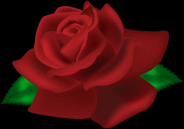 Rose PNG image with transparent background Clip art, Art