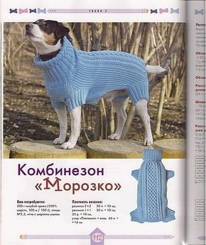 Trendy Crochet Sweater Dog Ideas #dogcrochetedsweaters