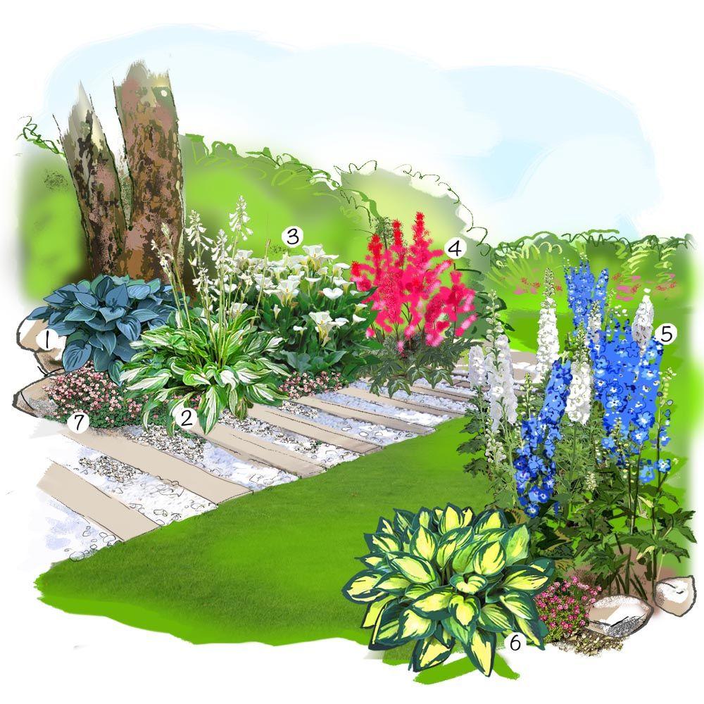 Projet am nagement jardin jardin des vivaces hosta for Idee amenagement jardin