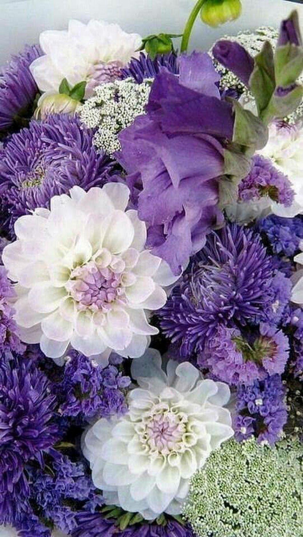 Beautiful flowers penny mowvley google plantas y flores