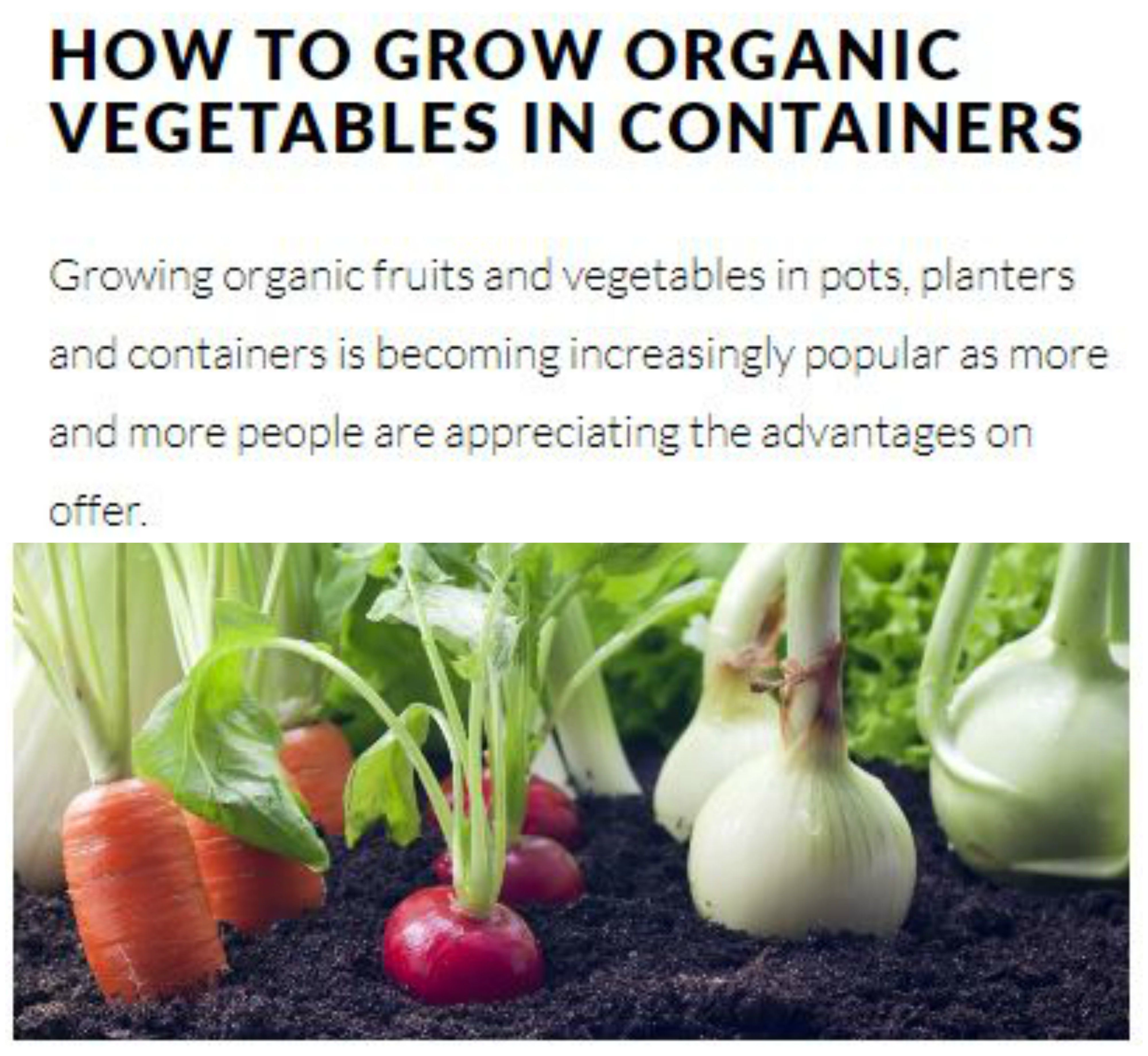 Superbe Growing Organic Crops In Containers, Pots And Planters Needs Some  Preparation Just Like Growing