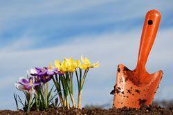 Gartenarbeit Im Frühjahr 4 Aufgaben Frühlingsgarten Pinterest