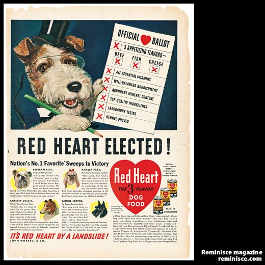 Vintage Ads For Fido And Friends Pet Food Ads From The 1940s