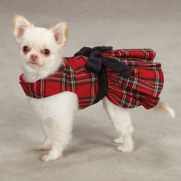 East Side Collection Holiday Tartan Dog Dress Dog Christmas