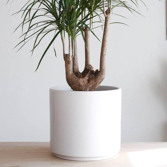 Mid Century Modern Plant Pot Modern Planter Large Indoor Etsy In 2020 Mid Century Modern Planter Modern Planters Planter Pots Indoor