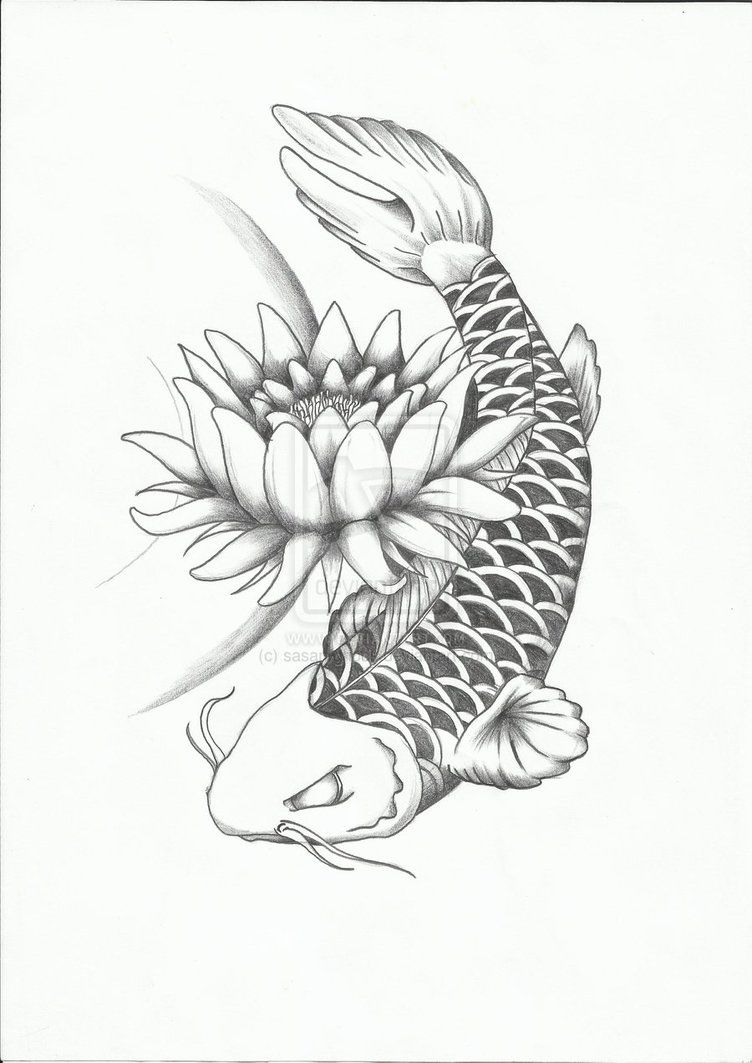 koi fish coloring pages games free coloring pages for kids koi