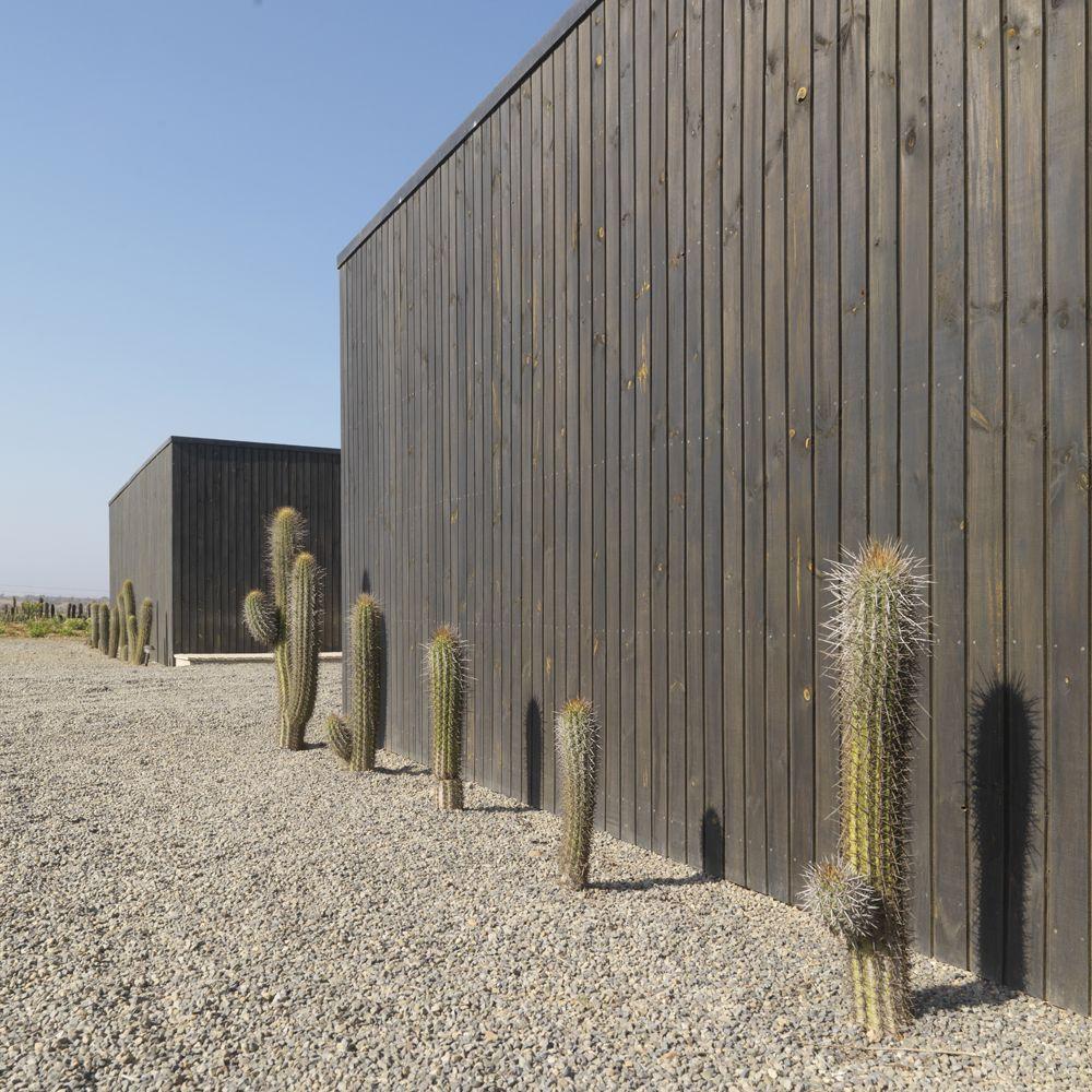 House W / 01Arq/Architects: 01Arq  Location: Huentelauquen, Chile  Architects: C.Winckler, P.Saric, F.Fritz