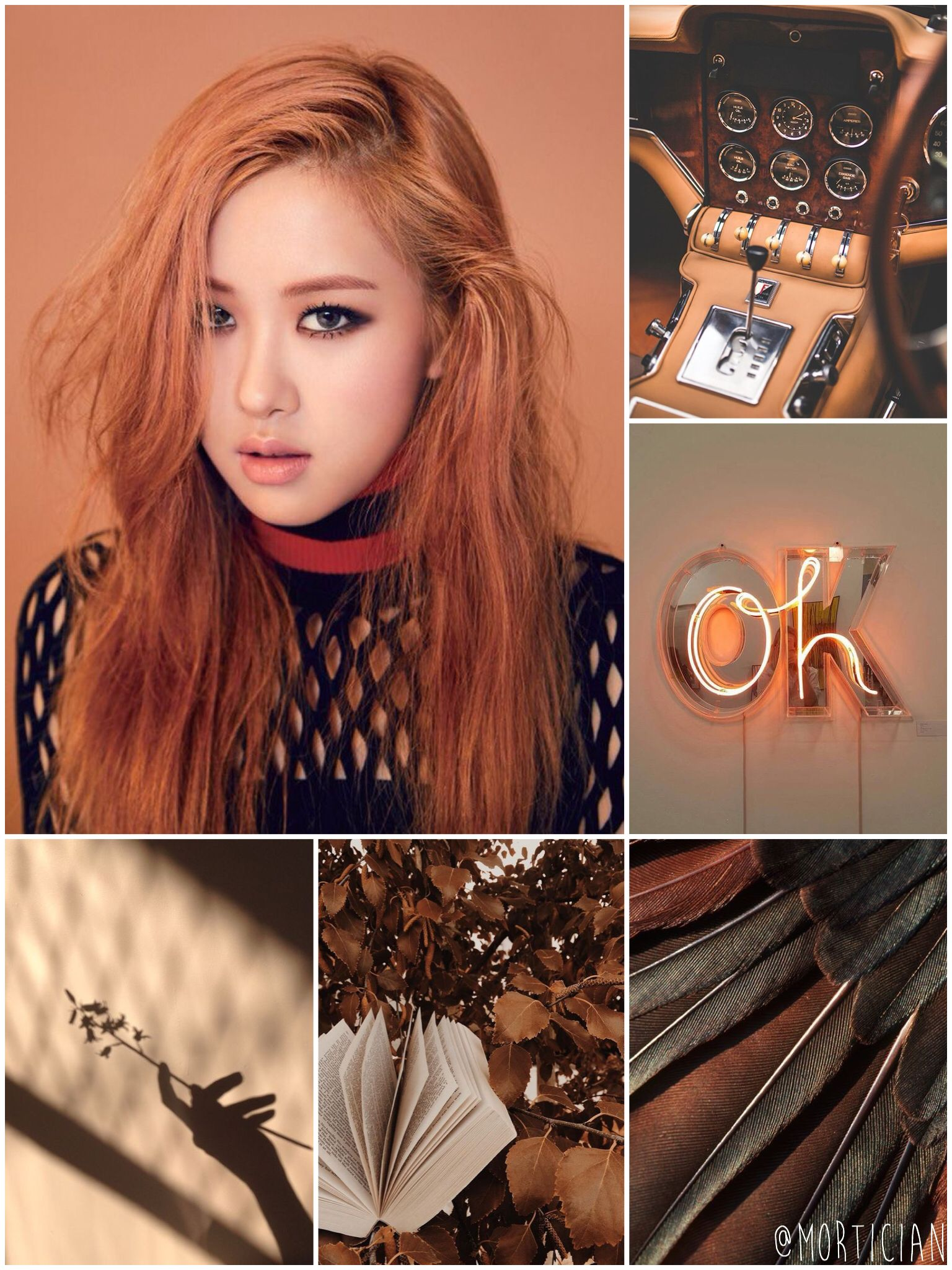 Pin By Andie Solis On Chroma Things Aesthetic Vintage Brown Aesthetic Light Orange