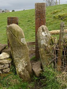 Stone Squeezer Wooden Step Over Stile With Images Dry Stone Wall Wooden Steps Dry Stone