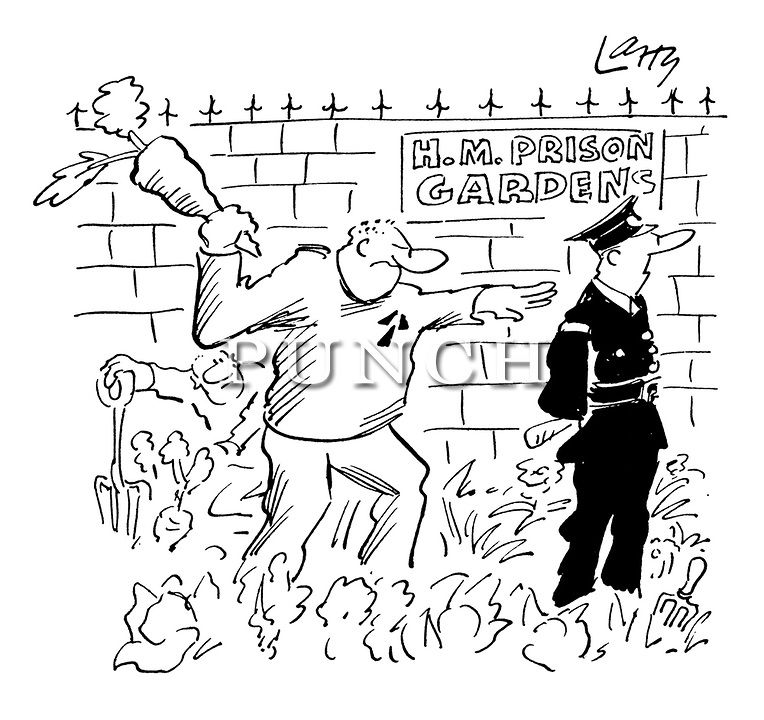 Larry Terence Parkes Cartoons From Punch Magazine: (A Prisoner Working In A Prison Garden Attempts To Hit A