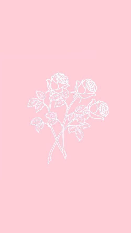 Rosy Takinggreatpicswithaniphone Pink Wallpaper Iphone Baby Pink Wallpaper Iphone Pastel Pink Wallpaper