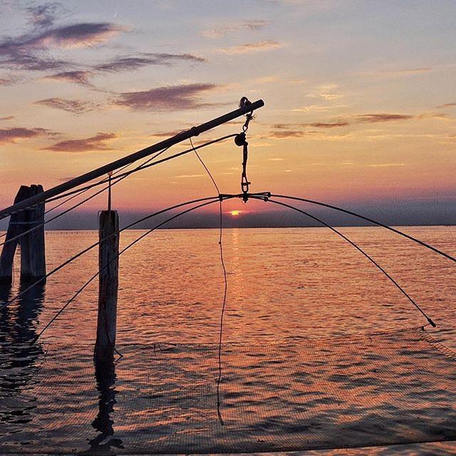 Buongiorno cari igers Oggi vi salutiamo con la foto di @spillox scattata a Pellestrina.  #Pellestrina #Venezia #igersvenezia #igersveneto #igersitalia by igersvenezia