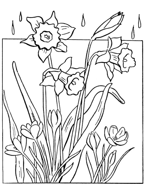 Spring Coloring Pages Picture | Coloring Pages Kids | Pinterest