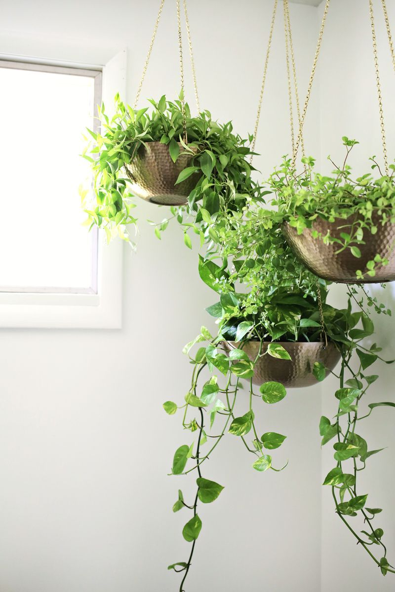 Hanging planters out of metal bowls love this click for Home decor with plants