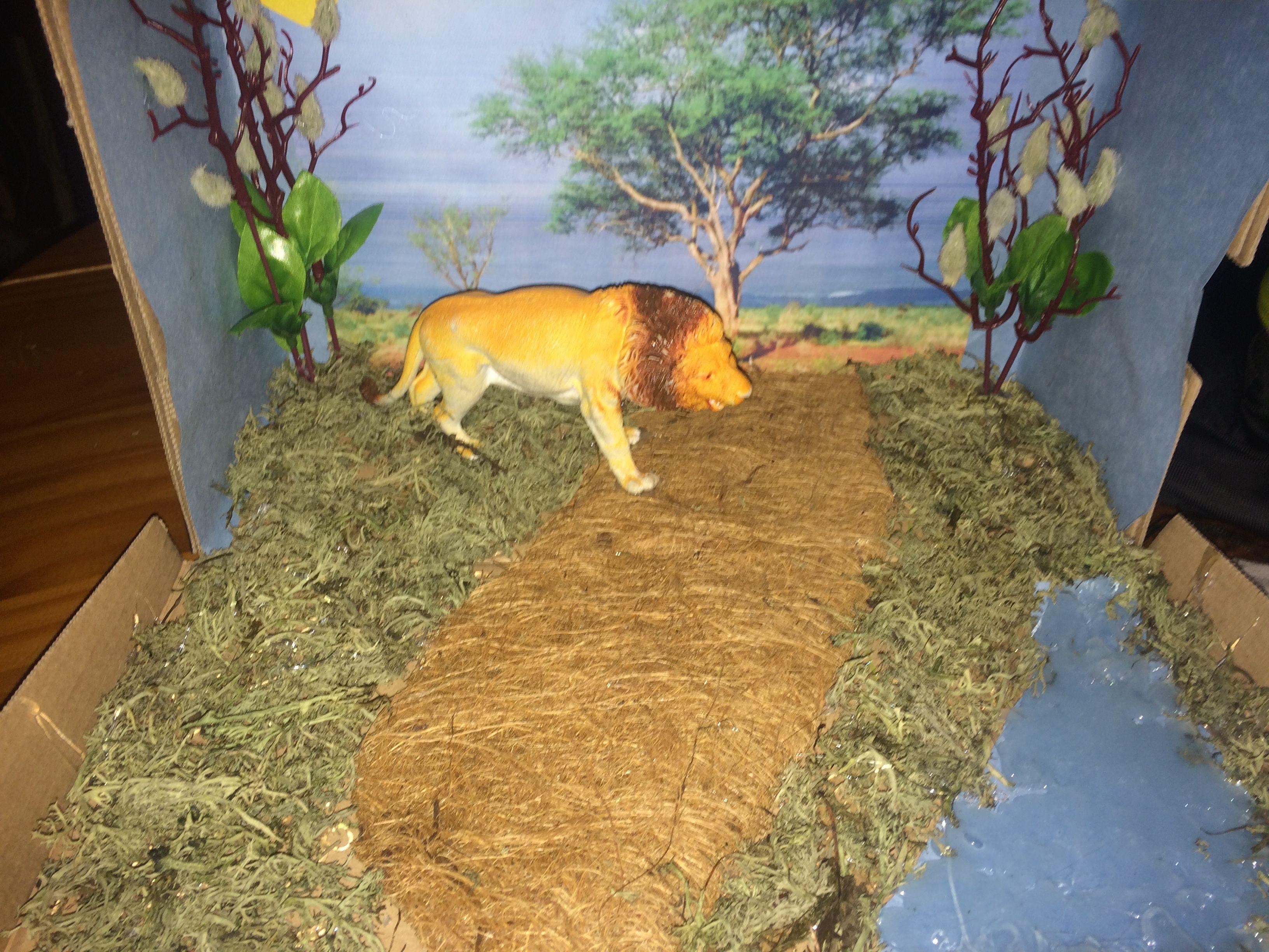 Lion Diorama
