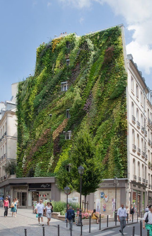 l 39 oasis d 39 aboukir paris angle rue d 39 aboukir rue des petits carreaux vertical garden. Black Bedroom Furniture Sets. Home Design Ideas