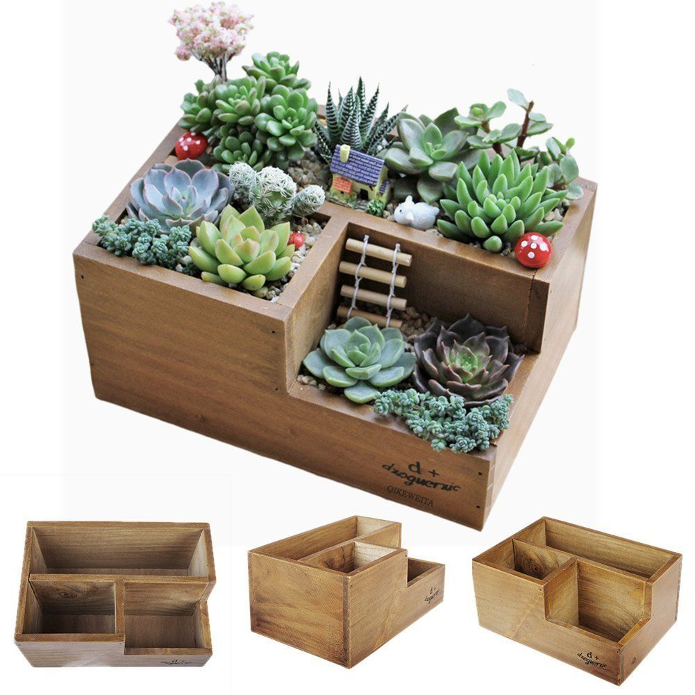 Wooden succulent planter boxes for indoor for Fairy garden box ideas