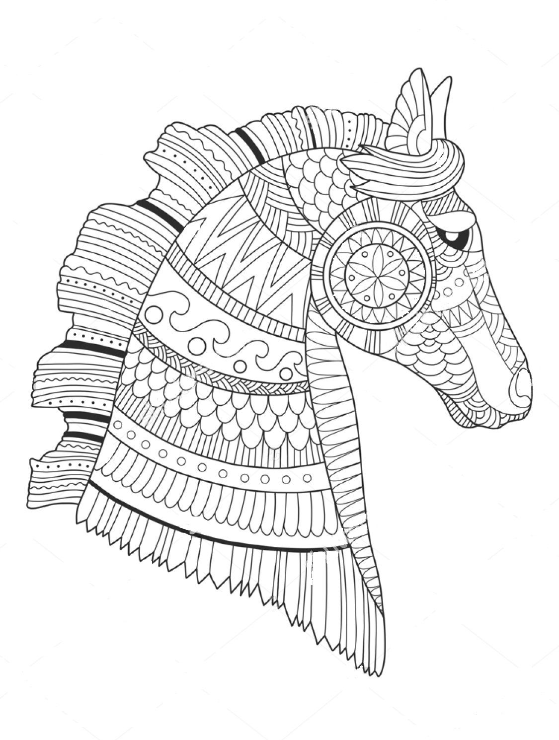 Pin On Animal Zentangle Coloring Pages