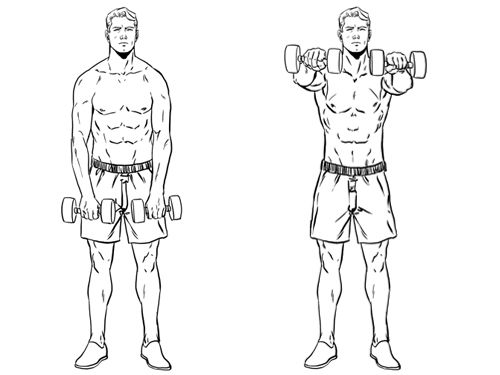 Image result for Front raise for shoulder
